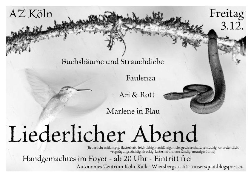 Liedermacherei-Abend im besetzten Haus in Köln